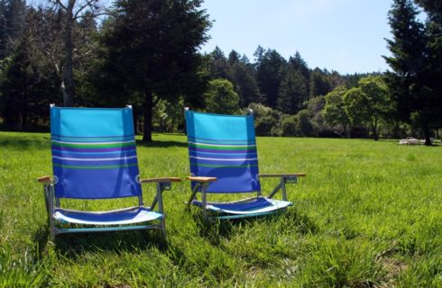 Lounge chairs sitting in the green grass