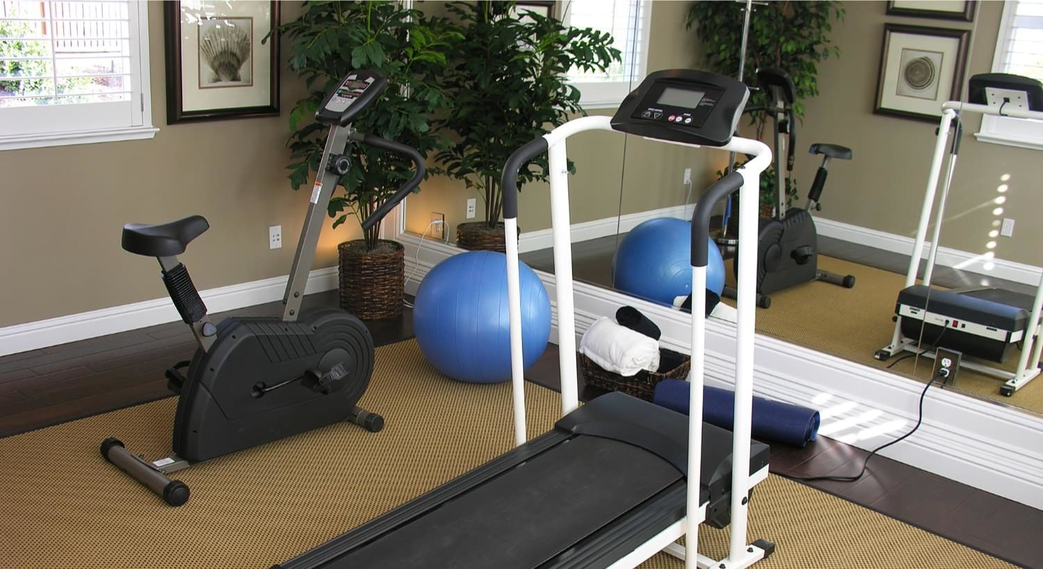 Room with stationary bike and treadmill