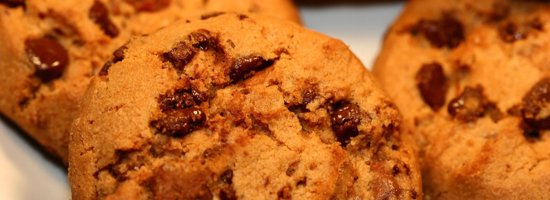 Close up view of chocolate chip cookies